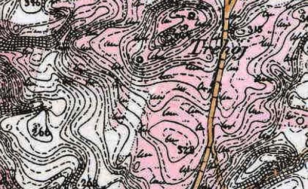 10: Udsnit af kort fra 1800-tallet viser de store lyngarealer omkring Trehøje.
