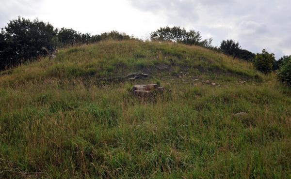 5: Nordsiden af den nyplejede Troldhøj.