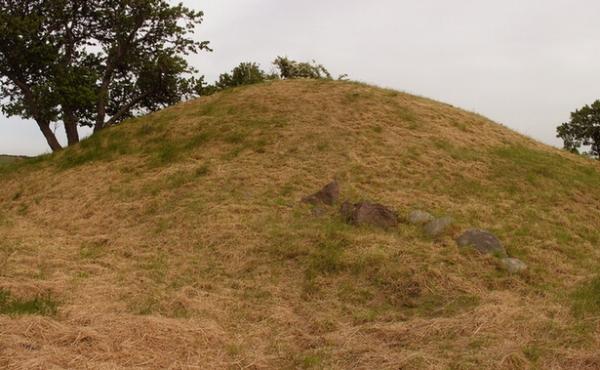 2: Nordsiden af højen med sten.