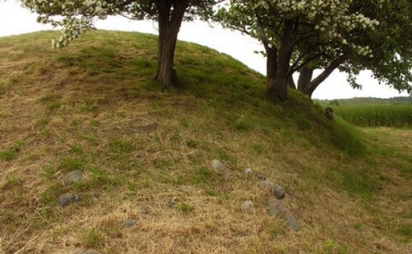5: Sydsiden af højen med tilvokset dynge af marksten ved højfoden.