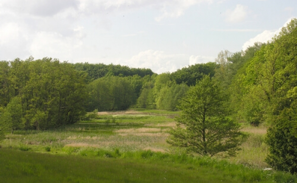 5: Udsigt mod vest gennem ådalen ved Broskov.