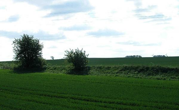 3: Oprindeligt har Dandiget været næsten 1,5 km. langt.