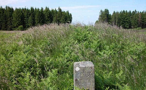Fredningen af Hjortsballe blev gennemført i 1908, og der blev da opsat en fredningssten ved hver af de 14 rydningsrøser.