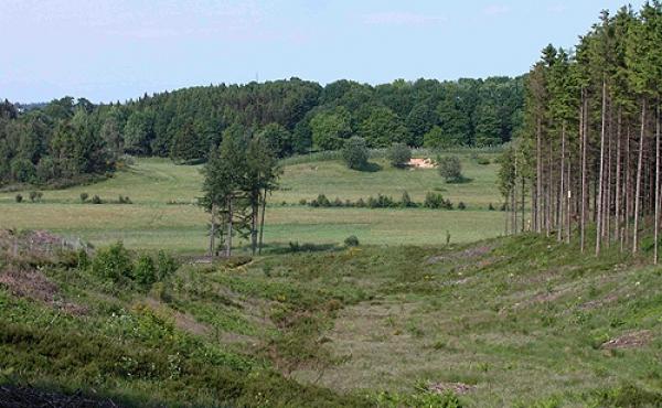 Udsigt over dalen nord for markerne. Flere steder i skrænterne ses spor efter gamle hulveje.