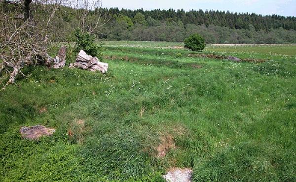 Klosterkirken lå i den sydlige fløj af det 4-fløjede kloster som omsluttede klostergården.