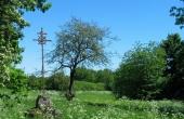 Tomten efter middelalderens Bjarup Kirke markeret med Tor Langes jernkors fra 1915 ligger i dag fredeligt hen på den skovklædte bakke nord for Bjarup Mose.