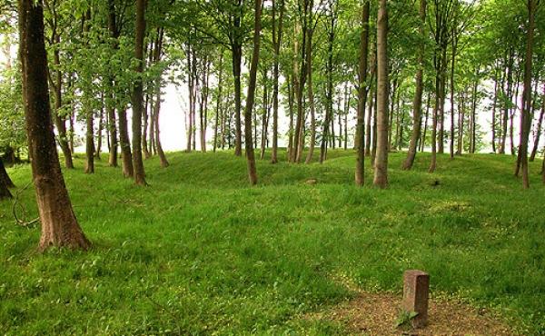 Toppen af vestbanken hvor der er fundet en stenbrolagt gårdsplads er stadig relativ flad. Her set fra vest.