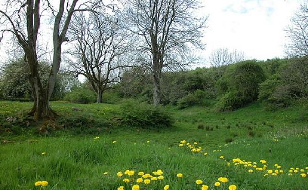 Nordvesthjørnet og voldgraven omkring Hagsholm Voldsted set fra nordøst.