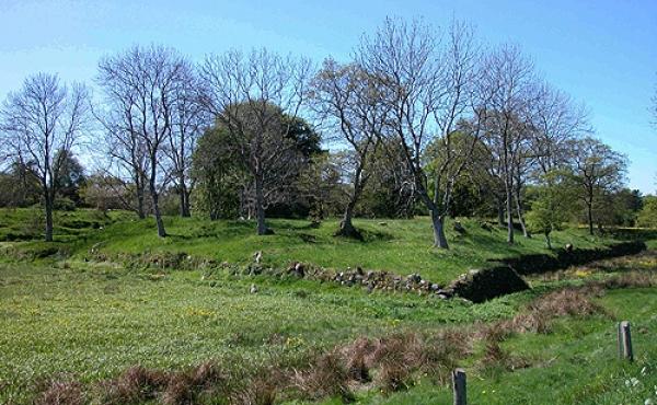 Skovgårde voldsted set fra nordkystvejen mod sydvest.