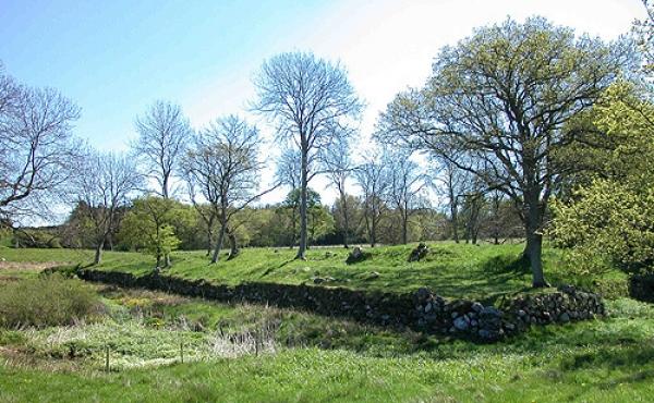 Skovgårde voldsteds flotte nordside set fra nordvest.