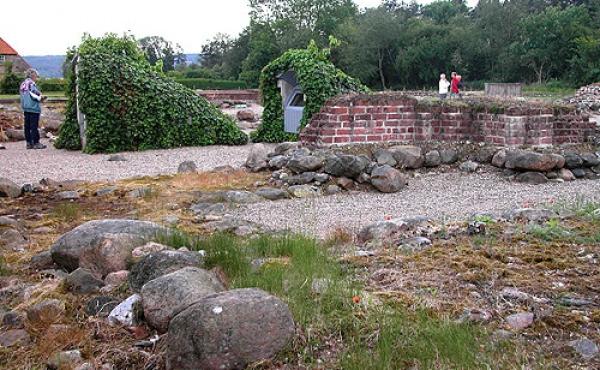 Ruinerne ved Øm Kloster.