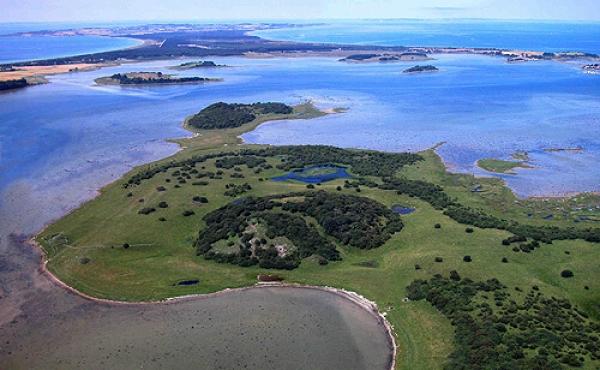 1: Stavns Fjord set fra luften mod nordvest. I forgrunden Hjortholm hvorpå der har ligget en middelalderborg. Kanhavekanalen er i baggrunden.