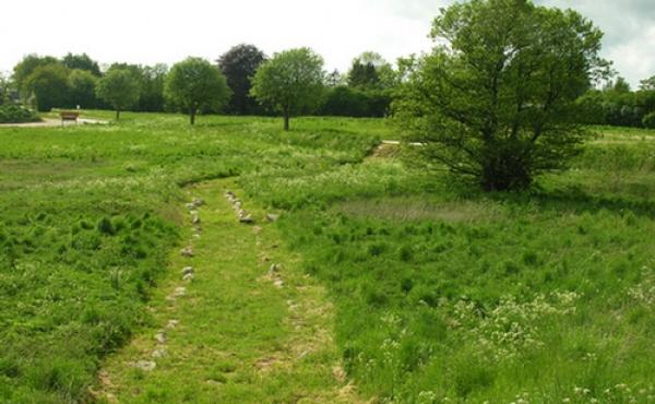 Den fredede vikingetidsvej ved Risby Å set fra øst.