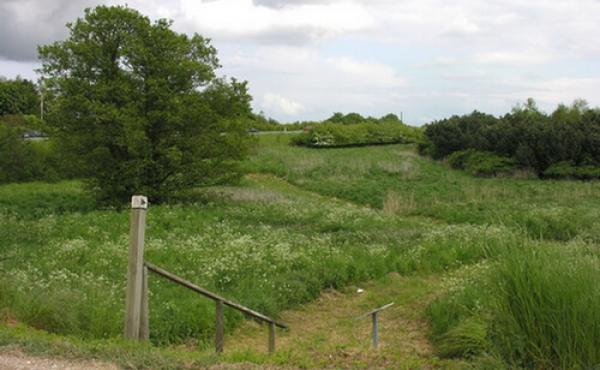 2: Trappen ved Risbyvej hvorfra man går ned til oldtidsvejen.
