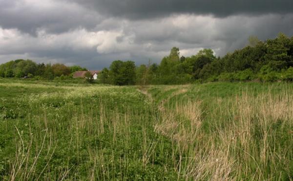 9: Risby Å - i dag kun en reguleret grøft og nu blot en skygge af oldtidens vandrige vandløb.