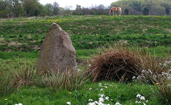 1: Sjelbro-stenen ved Alling Å markerer et mere end 2000 år gammelt overgangsted.