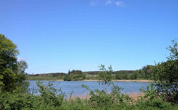 3: Udsigt mod nordvest over Kjellerup Sø fra Svenstrup-runestenen.