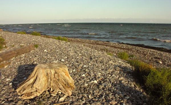Fra kysten lige nedenfor skansen hvor Brøndehøje fiskerleje tidligere lå indtil stormfloden i 1625.