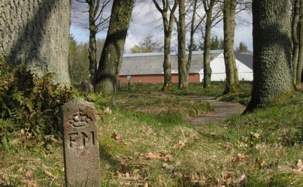 Fredningssten på kirkegårdsdiget.
