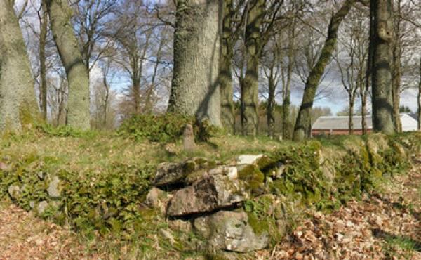 Panorama med kirkegårdsdiget set fra sydvest.