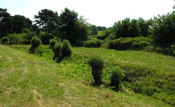 Den sydlige voldgrav set fra vest-nord-vest.
