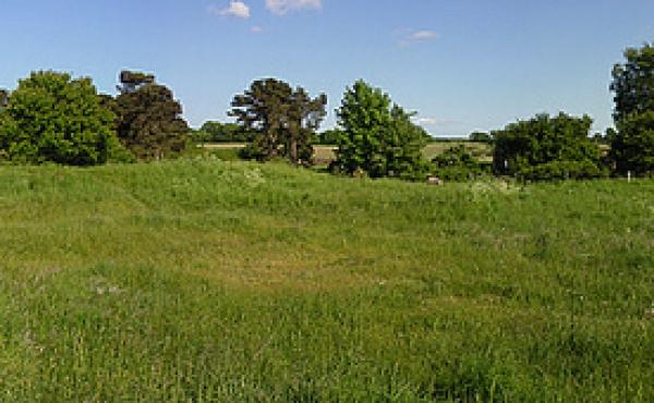 180-graders panorama over skansebanken. Til venstre Fakse Bugt og til højre Noret indenfor Maderne.