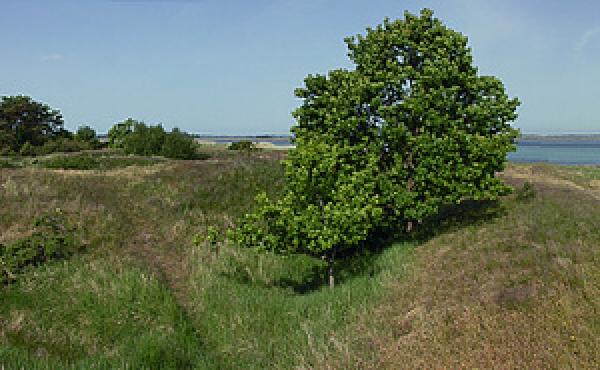 Panorama over Ulvshale Skanse samt sejlløbet gennem Ulvshale løb set fra øst.
