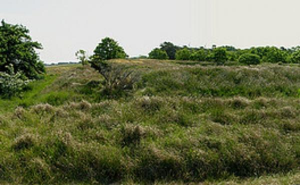 Panorama over skansen set fra vest.