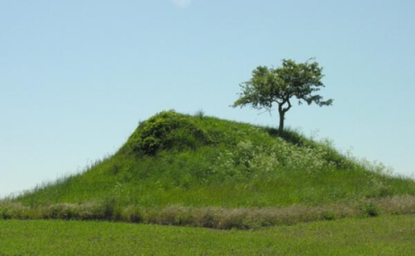 3: Den afgravede højkerne set fra nord.