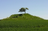 1: Nutidens afgravede Barhøj repræsenterer kun en lille del af en oprindelig anseelig høj med en af bondestenalderens store stengrave på Møn.