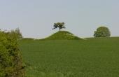 2: Barhøj i dyrket mark set fra sydvest.