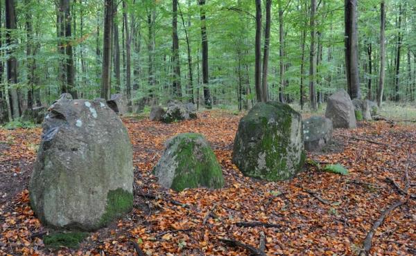 1: Store randsten langs nordsiden af Bulbro-langdyssen set fra nordøst. I højens midte ses afkløvede sten fra et gravkammer