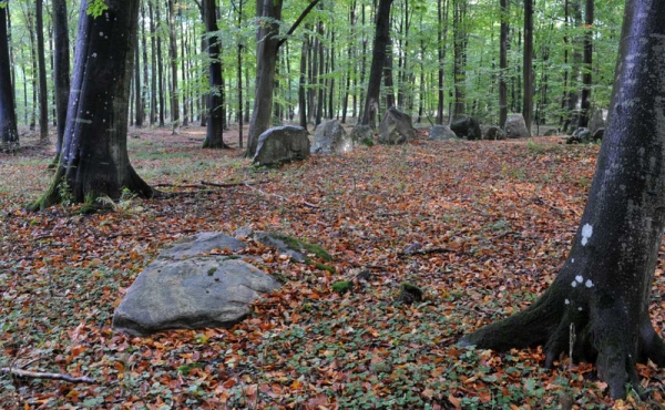 4: Væltet randsten eller sten fra et gravkammer midt i den afgravede høj set fra sydvest.