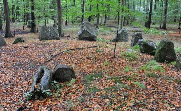 5: Østende af langdyssen med randsten og afgravet høj med rester fra bæresten i et gravkammer.