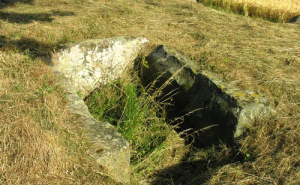 7: Det smalle gravkammer ligger helt ned i højen. Her set fra nordvest.