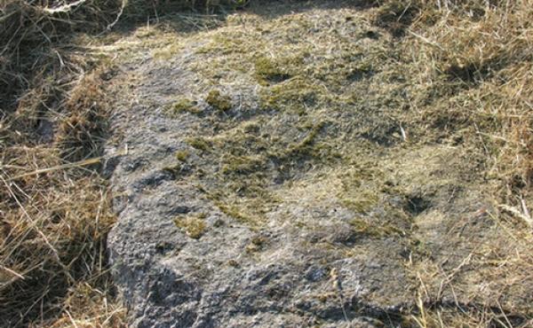 10: Der ses i al fald 27 skåltegn på stenens overside.