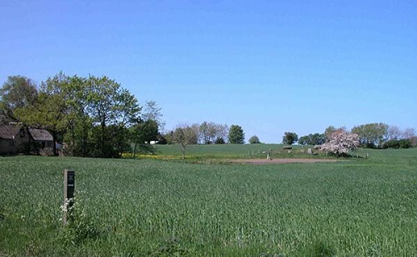 2: Langdyssen set fra Hovlinen med fortidsmindeskilt ved starten af trampestien over marken.