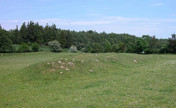 2: Givehøje set fra sydvest. Den nordligste høj ses i baggrunden op til træerne.