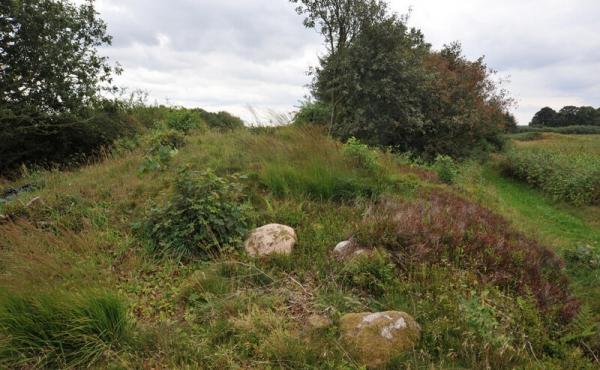 6: Stenene på højfoden stammer måske oprindeligt fra gravninger i højen..