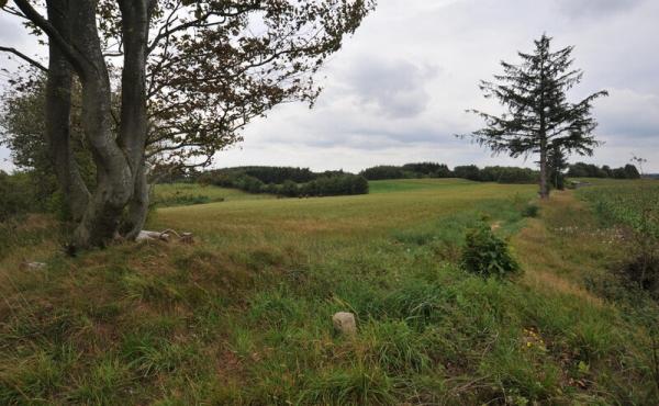 9: Stejlehøj ligger nu i kommune- skellet mellem Silkeborg i Viborg Kommuner. Skeldiget har sikkert meget gamle rødder.
