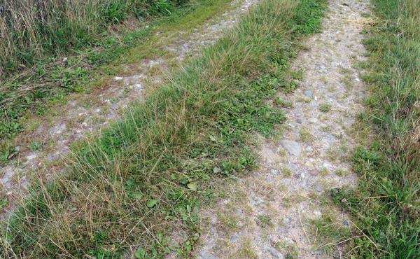12: Flere steder i grusvejene ses rester af gammel brolægning.