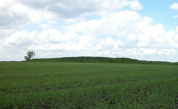 6: Haversdås langhøjen på marken set fra sydøst.