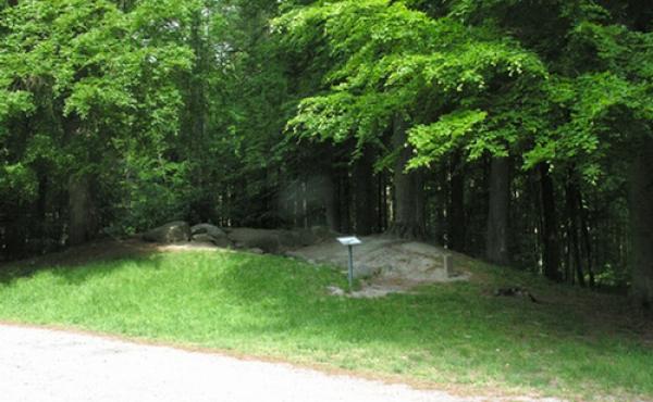 10: Hulehøj ligger superlet tilgængelig lige ud til skovvejen.