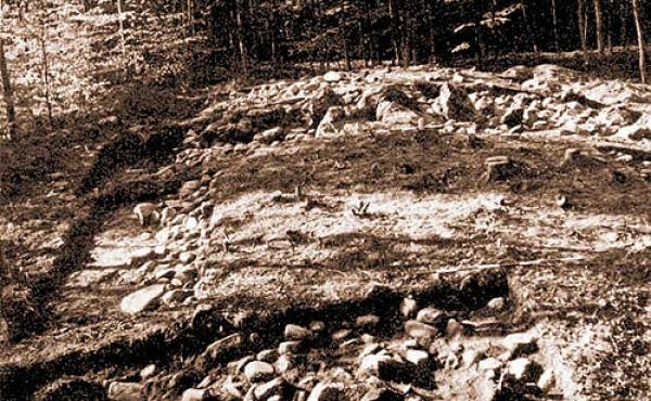 horret-skov-08