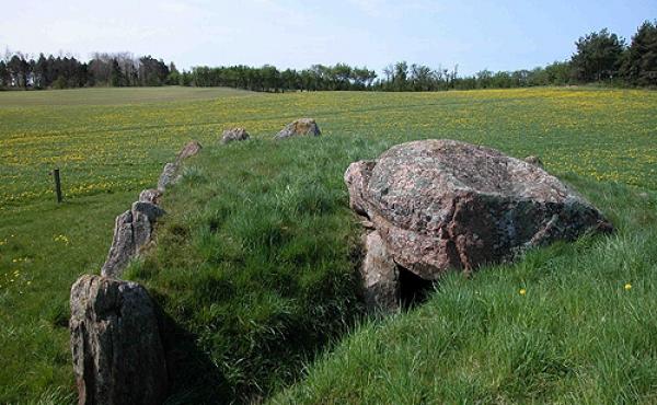 7: Langdyssens jordhøj forsegler stadig næsten helt de to gravkamre.