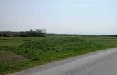 9: Den lille og måske intakte runddysse ud til vejen overfor gården kort sydøst for langdyssen.