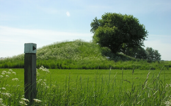 4: Det sidste stykke fører stien over marken.