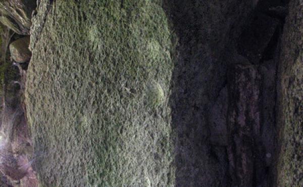 8: På den 2. bæresten i venstre side af gangen ses 8 indhuggede skålgruber fra bronzealderen.
