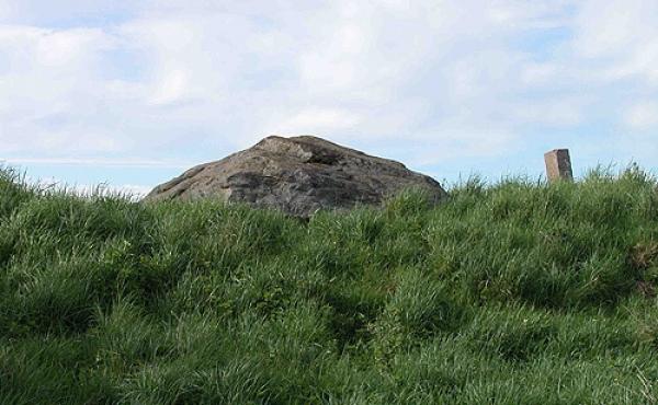 3: Dækstenen over gravkammeret stikker kun lidt op over højen. Her set fra nord.