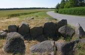 Stenene fra det østlige gravkammer i stordyssen ved Knudsby. Her set fra øst. Den nu meget forgravede langdysse ligger i dag helt ud til vejen. I baggrunden Oreby Skov som er rig på fortidsminder.